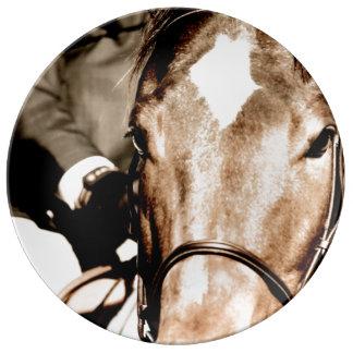 Muestre el caballo platos de cerámica