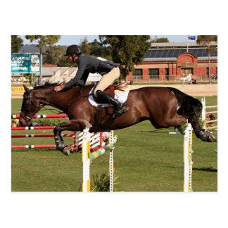 Muestre el caballo y al jinete de salto 2 tarjeta postal