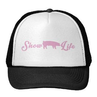 Muestre la vida del cerdo gorro de camionero