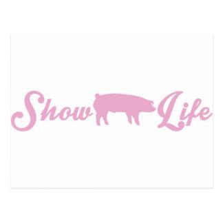 Muestre la vida del cerdo postales