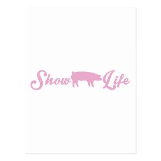 Muestre la vida del cerdo tarjetas postales
