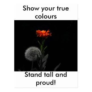 ¡Muestre sus colores verdaderos - coloqúese alto y Postales