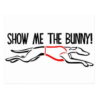 ¡Muéstreme el conejito! Postal