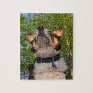 Muéstreme el encanto puzzle con fotos
