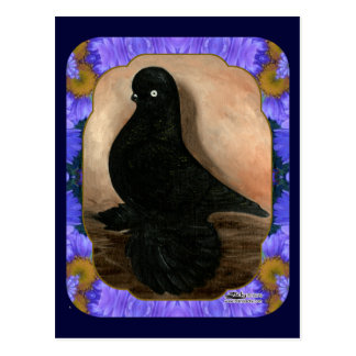 Muffed Tumbler Pigeon Framed Postcard