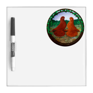 Muffed Tumbler Pigeons2 Dry Erase Whiteboards