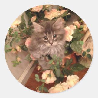 Muffen Kitten Classic Round Sticker