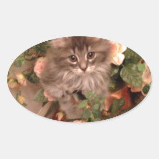 Muffen Kitten Oval Sticker