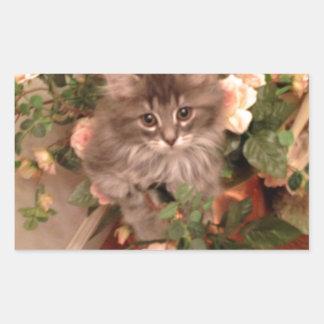 Muffen Kitten Rectangular Sticker