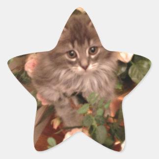 Muffen Kitten Star Sticker