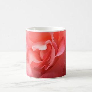 Mug a rich peach/pink rose close-up soft petals