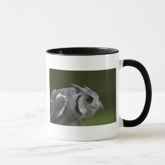 Mug - Baby Grey Owl
