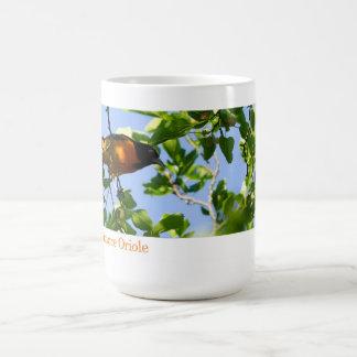 Mug, Baltimore Oriole in a Mulberry Tree Classic White Coffee Mug