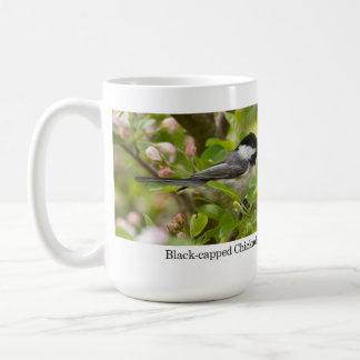 Mug, Black-capped Chickadee in Apple Blossoms Classic White Coffee Mug