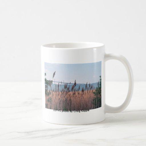 Mug / Chesapeake Bay