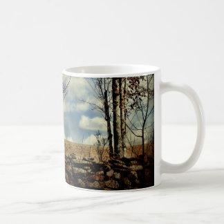 Mug-Collecting Sap
