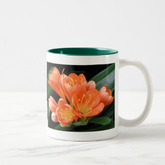 Mug, Fireweed 158 Two-Tone Coffee Mug