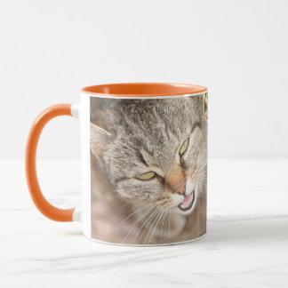 Mug Furry Friend- Fawn Tiger Stripe Cat.