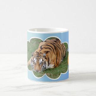 mug-khan-china-6