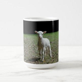 MUG: Lamb Coffee Mug