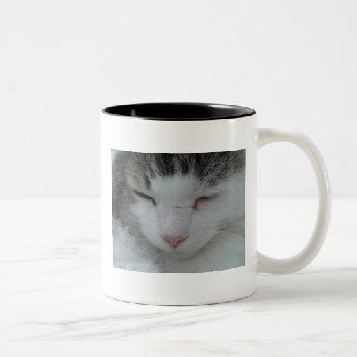 Mug - Maine Coon Cat Image 2