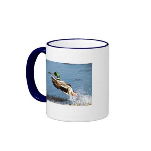 Mug / Mallard Duck