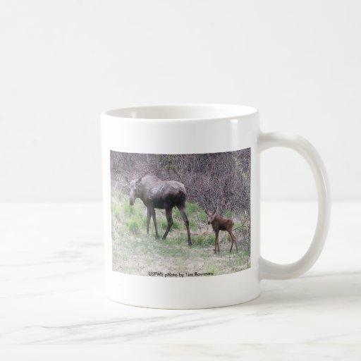 Mug / Moose and Calf