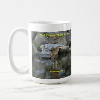 Mug or Stein depicting the Night Heron