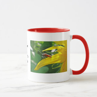 Mug red beetle on sunflower