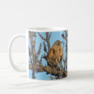 Mug - Robin in Bare Branches