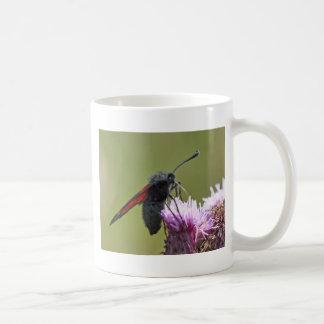 Mug: Six-Spotted Burnet