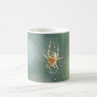 Mug - Spider on web