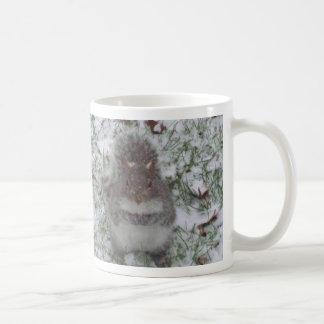 Mug: Squirrel