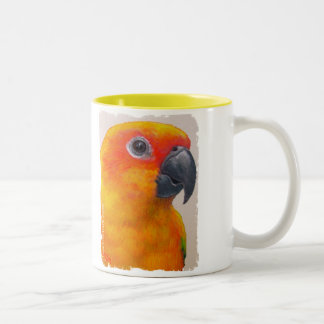 Mug - Sun Conure Parrot