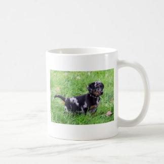 Mug Two-Image Template,beauceron pup
