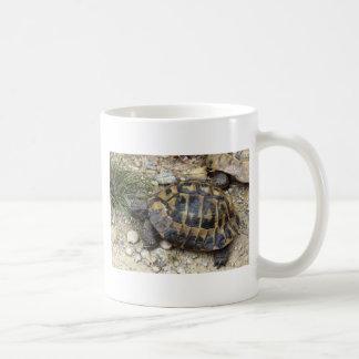 Mug Two imagen Tazas De Café