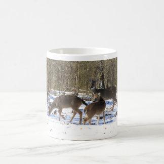 Mug - Whitetail Deer in the Snow