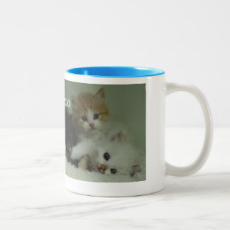 Mug with Kittens says Hello