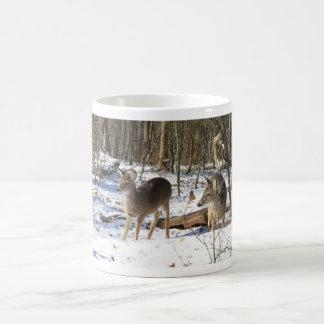 Mug - Young first year whitetail deer