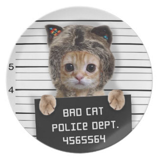 mugshot cat - crazy cat - kitty - feline melamine plate
