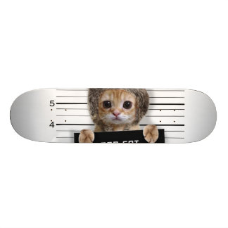 mugshot cat - crazy cat - kitty - feline skateboard deck