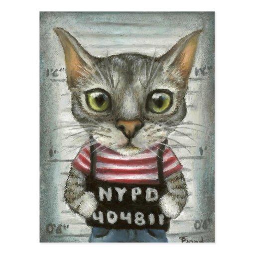 Mugshot de un criminal del gato postal