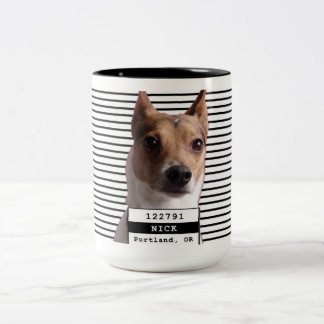 Mugshot Nick de la identificación del perro Taza Dos Tonos