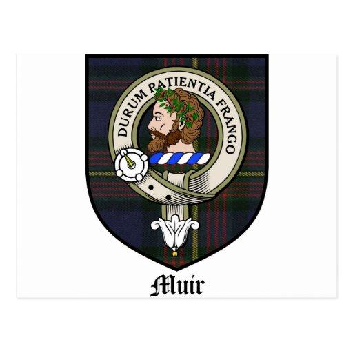 Muir Clan Crest Badge Tartan Post Cards