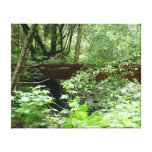 Muir Woods Bridge I Canvas Print