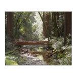 Muir Woods Bridge II Acrylic Print