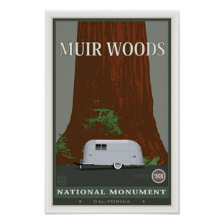 Muir Woods National Monument 1 Poster