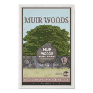 Muir Woods National Monument 2 Poster
