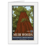 Muir Woods National Monument 3 Card