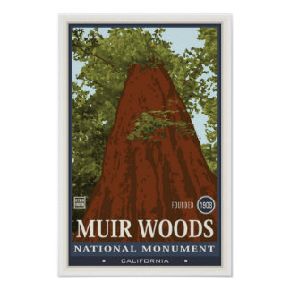 Muir Woods National Monument 3 Poster